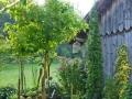 1_Jennifers Garten