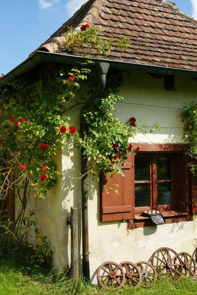 8_Garten Hilzingen