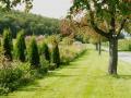 9_Garten Hilzingen