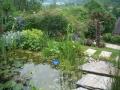 Blick in den Garten - Blick in den Garten