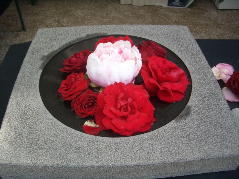 Tag der Rose in Ulm 2007 - Rosen in Steinschale