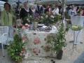 Tag der Rose 2008 in Ulm - Rosenstand Rosenfreunde Ulm
