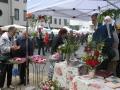 Tag der Rose 2009 Ulm - Rosenstand der Rosenfreunde Ulm