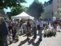 Informationsaustausch bei Tag der Rose in Ulm 2010