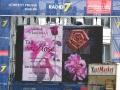 Tag der Rose 2012 001
