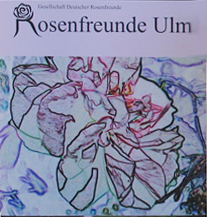 Plakat Tag der Rose in Ulm 2013